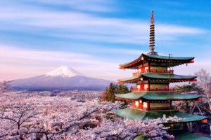 6 Day Essential Japan