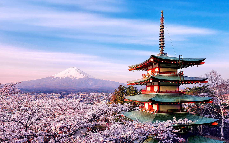 6 Days Japan Essential Tour - GW Tours