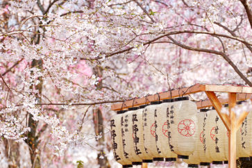 占位 12天日本本州、北海道之旅2018