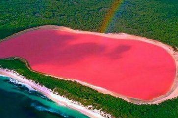 pink-lake2