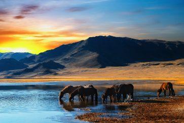 mongolkhans-mongolia