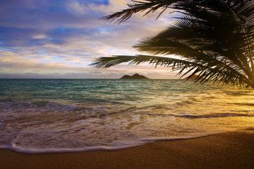 hawaii_960x420