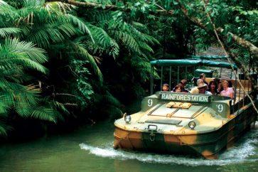 Rainforest Station
