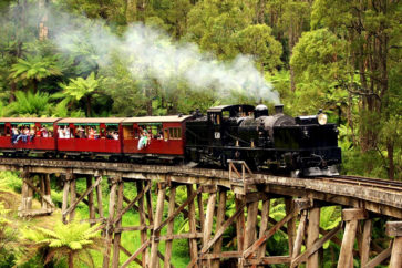 mount-dandenong-puffing-billy